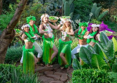Hula Dancers copy 2